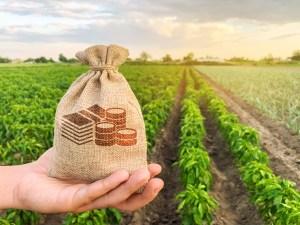 Farming Incentives - scoping plan