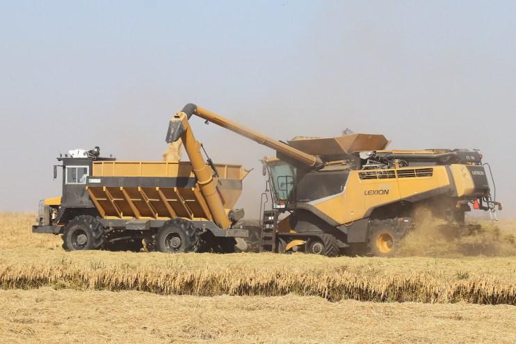 2020 Rice Harvest