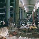 Разрушенный и разграбленный Иракский национальный музей. Багдад, 2003 г.