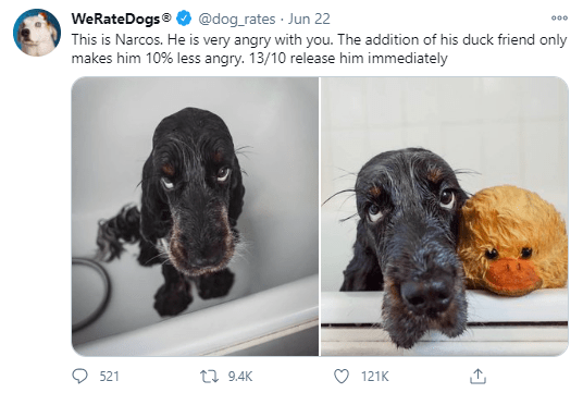 We Rate Dogs