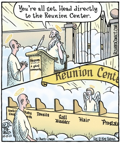 Bizarro Heavenly Reunion Center