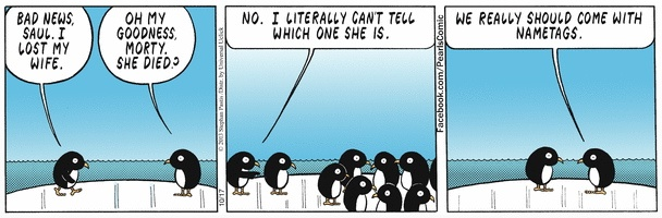 Pearls Lost Penguin Wife