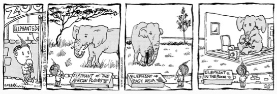 Lio Elephant in the Room Cartoon