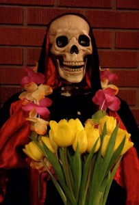 Lola with tulips at the ABQ Death Cafe