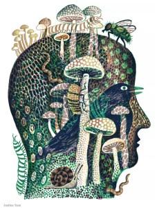 Illustration by JooHee Yoon