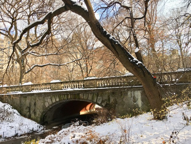 Winter in Central Park, A Good Hue