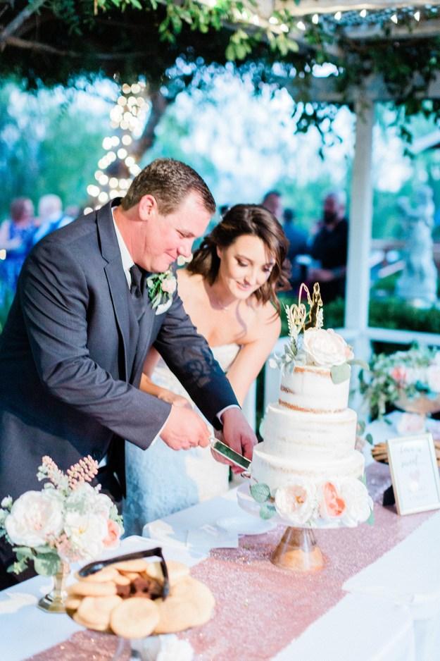 Wedding Cake Cutting | A Good Hue