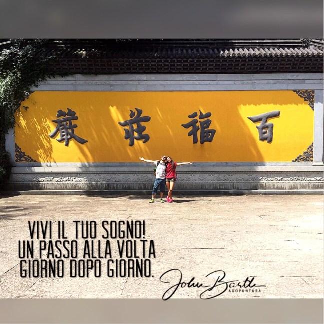 Vivi il tuo sogno! Un passo alla volta, giorno dopo giorno. john barth si trova in Cina per studiare agopuntura e medicina cinese. aforisma di motivazione.