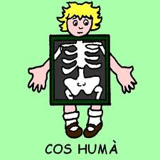 Resultat d'imatges de cos huma