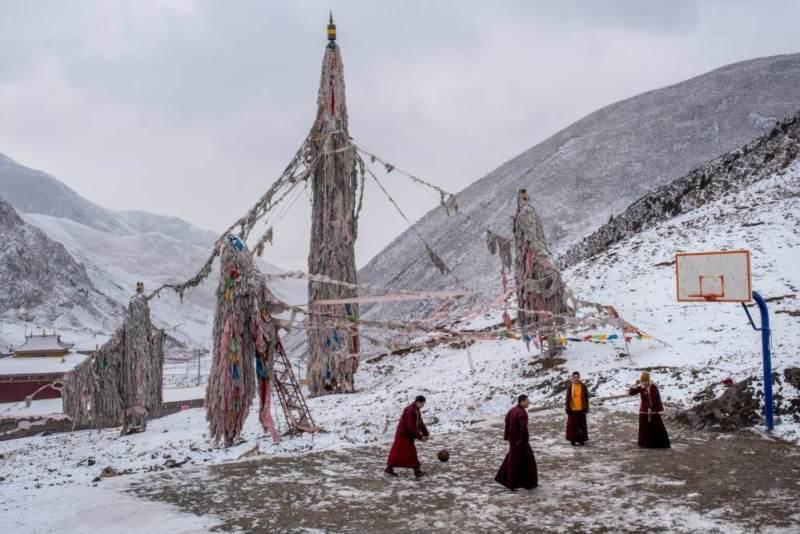 Forsyth The Plateau Tibett
