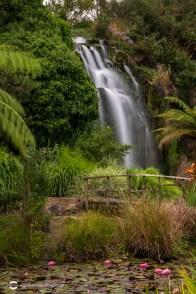 wrightswater-gardens06
