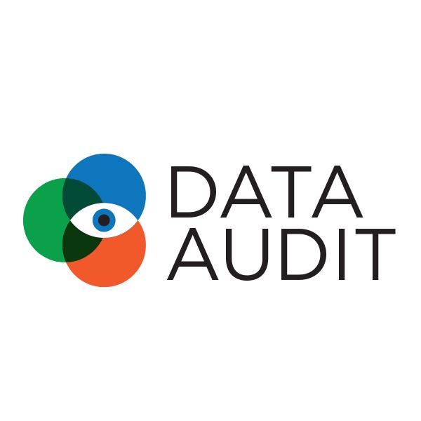Data Audit logo for Tadata
