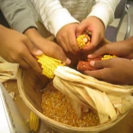 Farm Profile: Food Growing Program