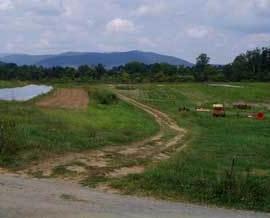 Farm Profile: Waterpenny Farm