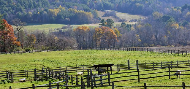 Succession Schools offer options for New England's Retiring Farmers