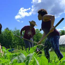 A Digital Map Leads to Reparations for Black and Indigenous Farmers