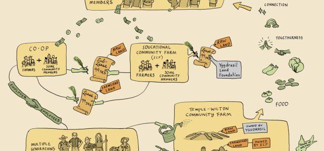 Thirty Years of Trailblazing a Farm Community at Temple-Wilton Community Farm