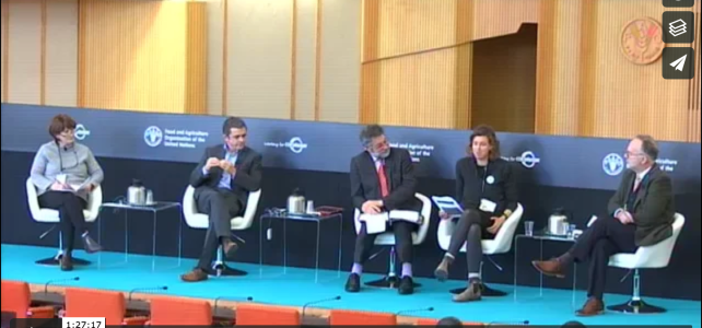 Video: FAO International Symposium on Agricultural Innovation for Family Farmers Panel Featuring Agrarian Trust Founder