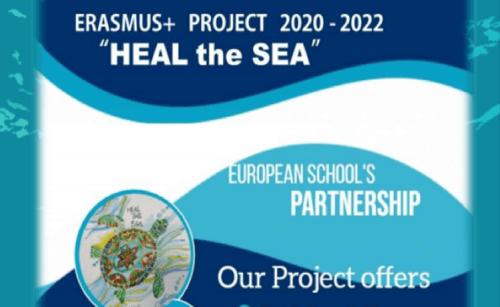Flyer de divulgação do projeto Heal the Sea