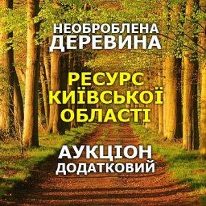Додатковий аукціон, необроблена деревина, Київська область @ Аграрна біржа | Київ | Україна