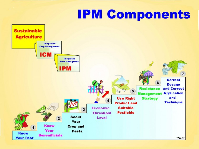 IPM COMPONENTS LAYOUT DESIGNED BY DR.IBRAHIM AL--JBOORY 2002