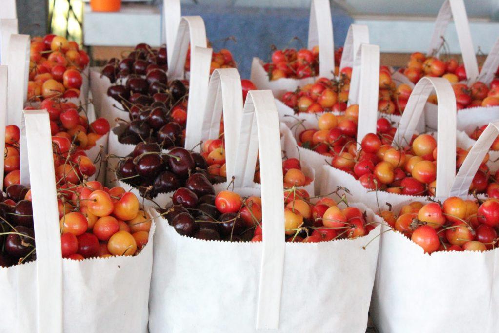 Variety of cherries in bags