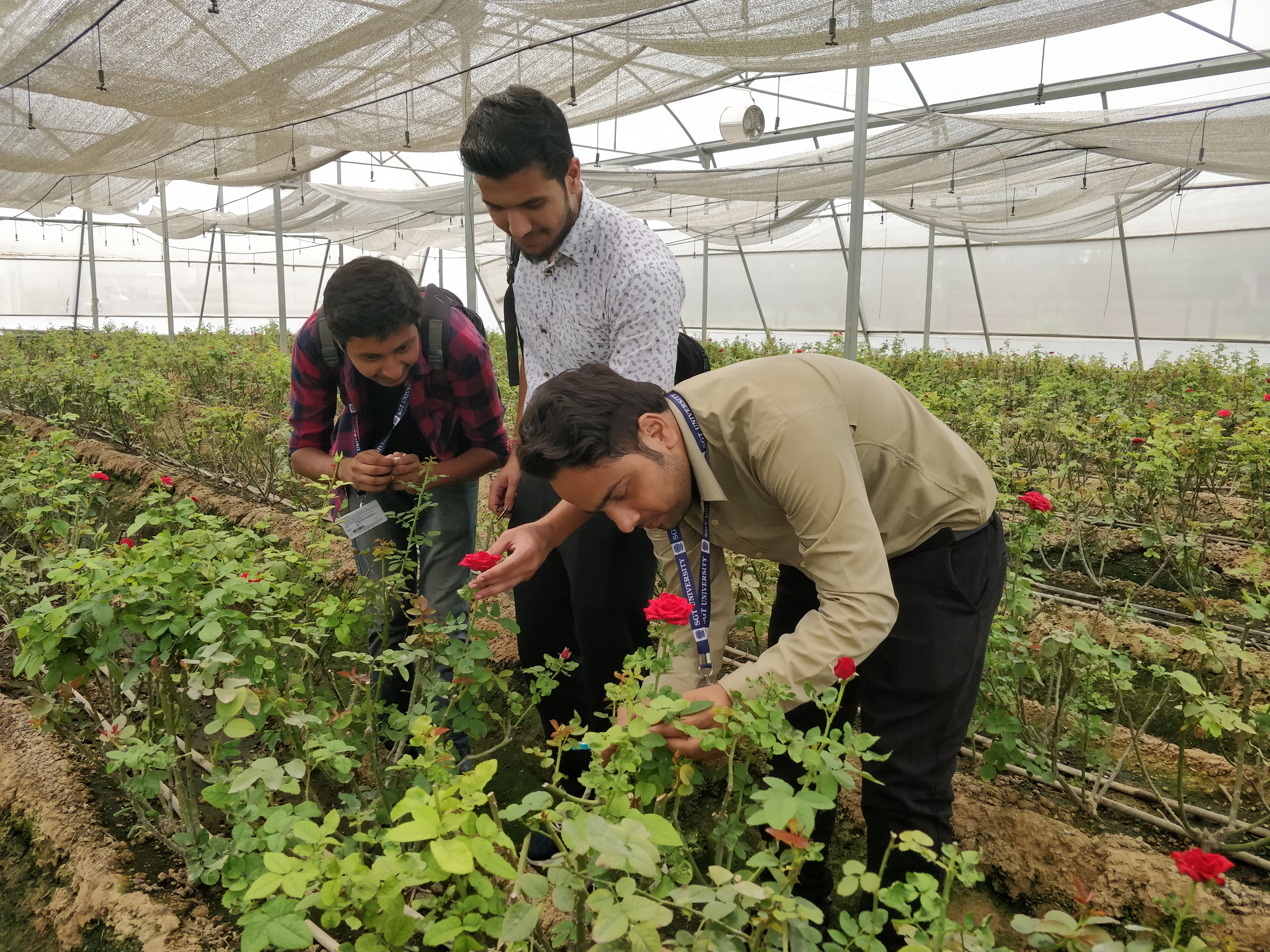 Visit to Center of Excellence for vegetables (Indo-Israel Project), Gharaunda, Karnal