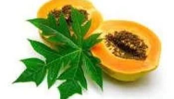 vajon a papaya lefogy gyógynövények fogyás Nigériában