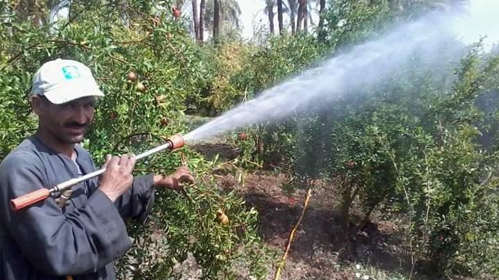 قواعد واسس خلط المبيدات