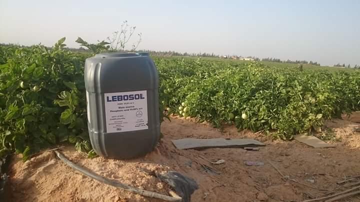 حمض الفوسفوريك فى الزراعة .. المميزات وطريقة التصنيع