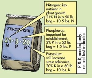 الأسمدة الكيميائية المركبة