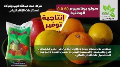 Photo of تعرف علي أهم مصادر البوتاسيوم للنبات
