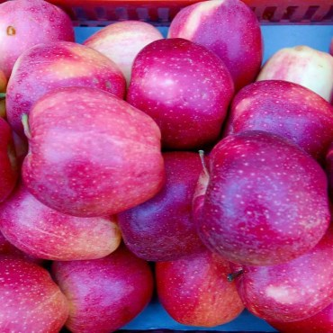 Mele Red Delicious Tabasso