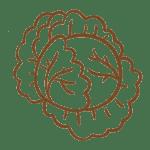 Agricola Tabasso Verdura Cavolfiore