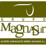 logo magnasur