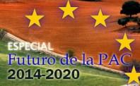 Pac, 2014/2020