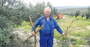 agricultor de olivar