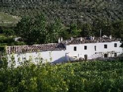 olivar de cazorla