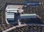 Cooperativas de aceite de oliva y la eficiencia energética.