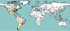 Áreas afectadas por la bacteriaÁreas afectadas por la bacteria