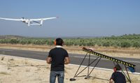 Dron sobre un olivar