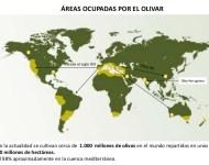 mapa mundi de la producción de aceite