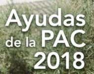 Texto de la pac 2018, fondo de olivos