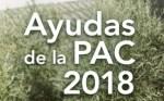 A partir del 16 comenzarán los pagos de la Pac