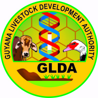 GLDA BLACK GIANT PROJECT - A HIT IN THE RIVERINE COMMUNITIES