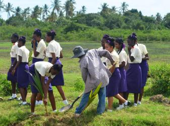 Students during the planting exercise