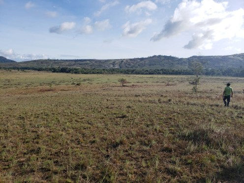 Community plot in Monkey Mountain proposed by the villagers for agricultural development