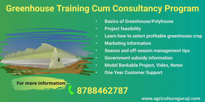 greenhouse training
