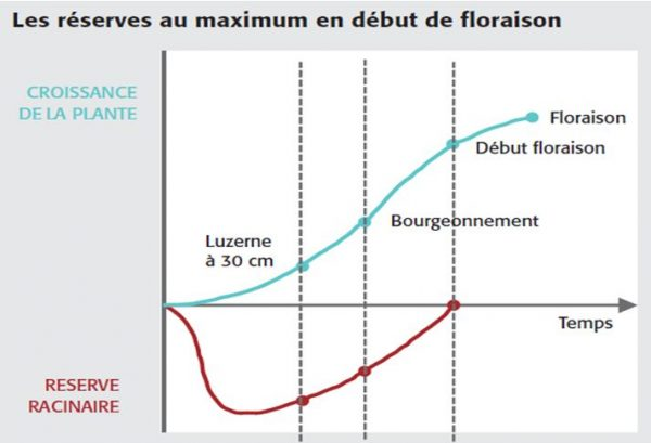 Graph Luzerne