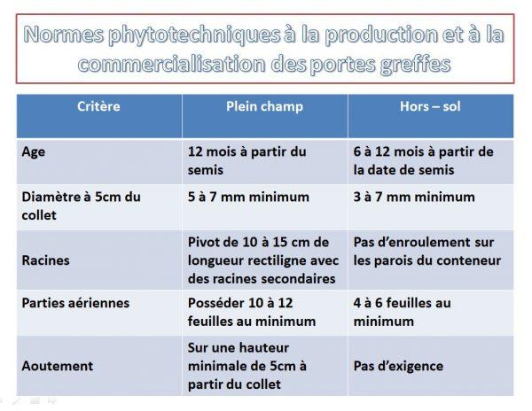 Normes phytotechniques à la production et à la commercialisation des portes greffes